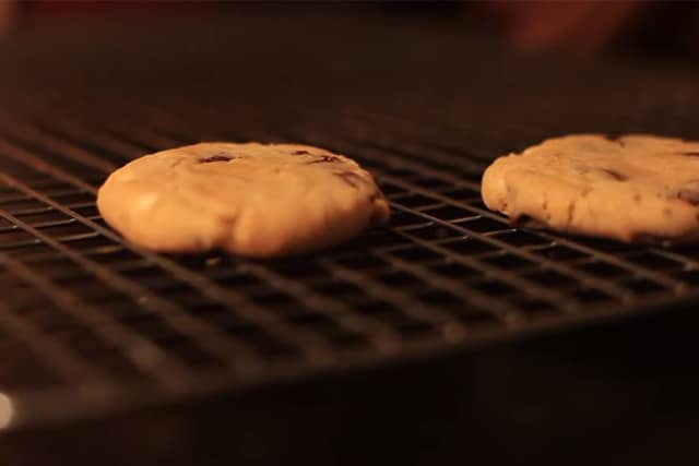 freshly baked chocolate chip cookies in the oven