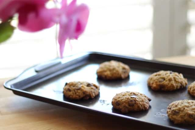 delicious freshly baked oatmeal cookies