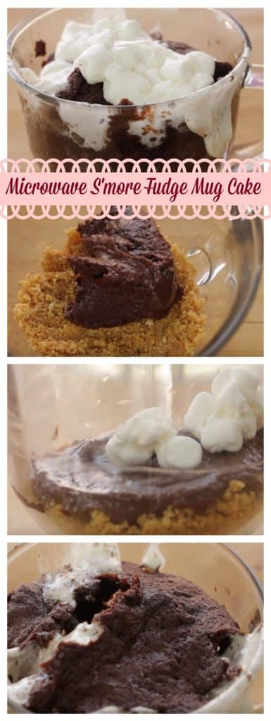 Microwave S'more Fudge Mug Cake step by step guide