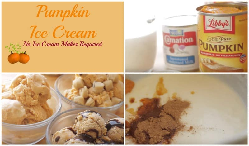 Pumpkin Ice Cream No Ice Cream Maker Required