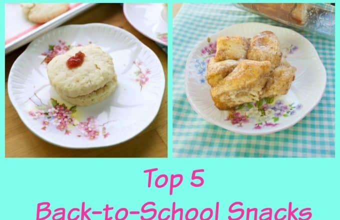 Top 5 Simple Back to School Snacks