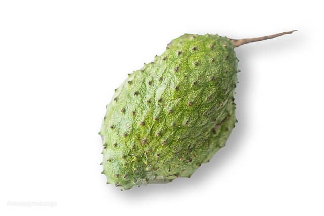 soursop or guyabano fruit