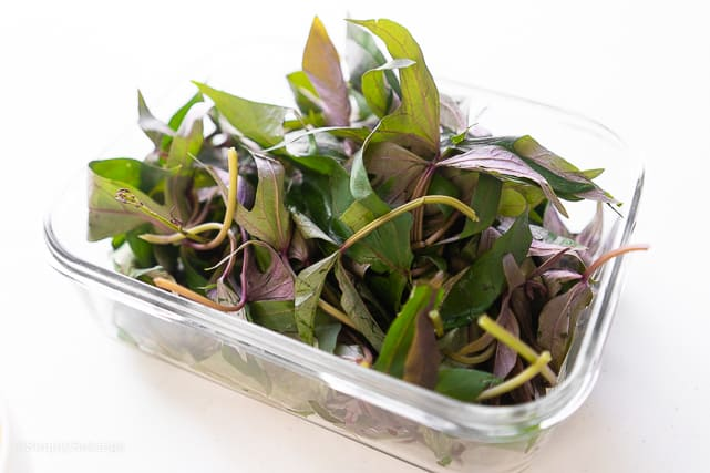fresh sweet potato leaves for juice