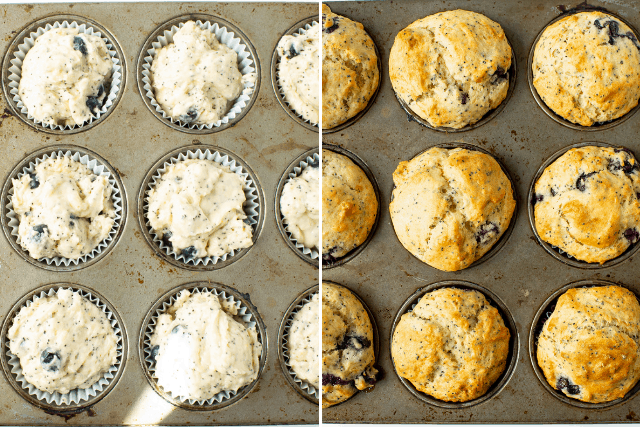 blueberry lemon poppy seed muffins in a muffin tin