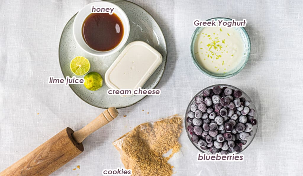 ingredients for blueberry popsicles