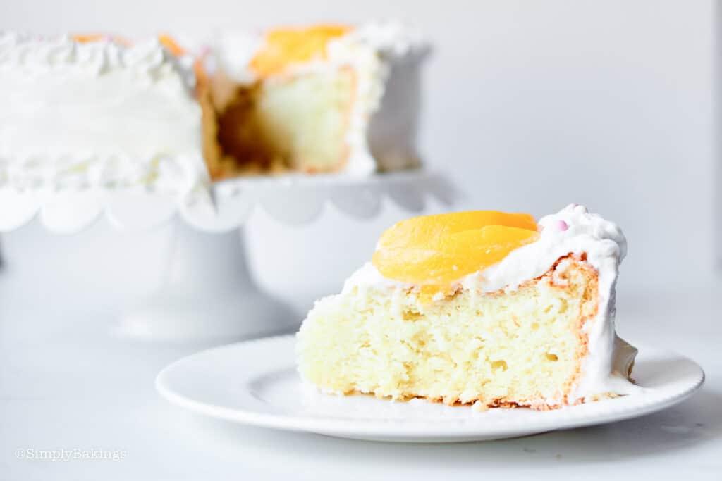 a slice of chiffon cake on a white dessert plate